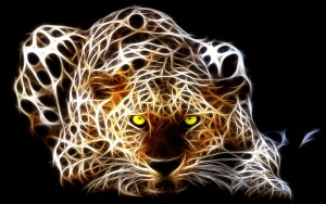 fantasy tiger 300x188 Fantasy Marketing Romano Pisciotti