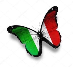 Farfalla italiana 300x274 INDUSTRIAL VILLAGE Romano Pisciotti