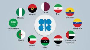 opec2 300x168 OPEC Romano Pisciotti