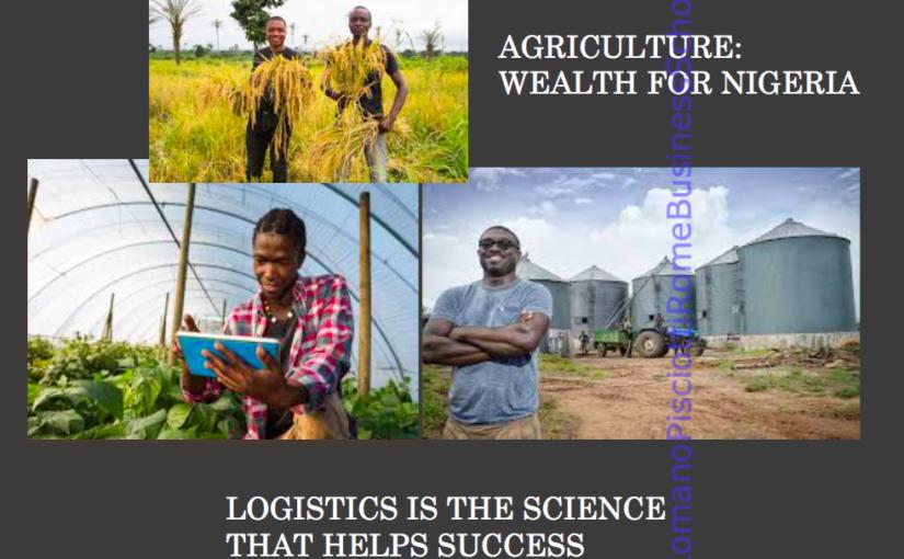 AGRIBUSINESS – NIGERIA