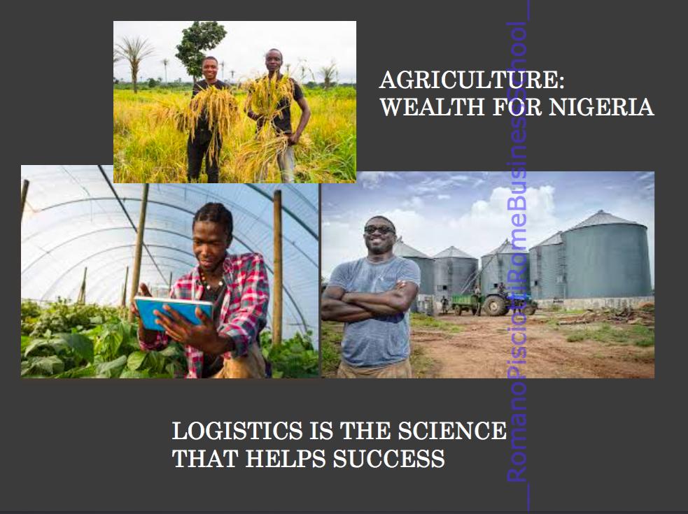 Schermata 2019 11 11 alle 10.43.26 AGRIBUSINESS   NIGERIA Romano Pisciotti