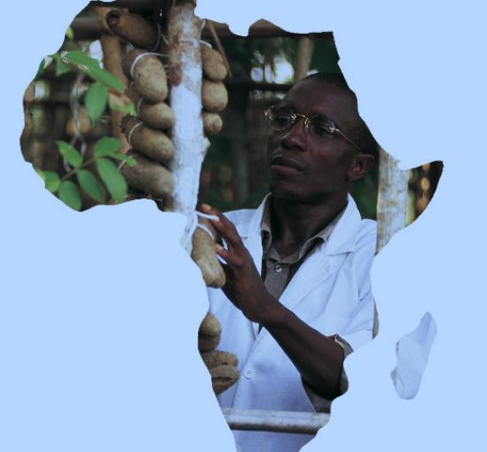 ITALMOTOR AFRICA